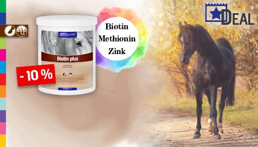 HippoSport Biotin plus