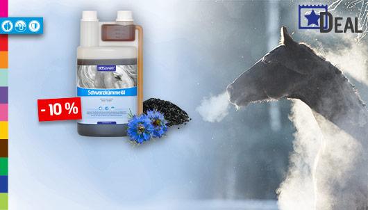 Deal des Monats - Schwarzkümmelöl