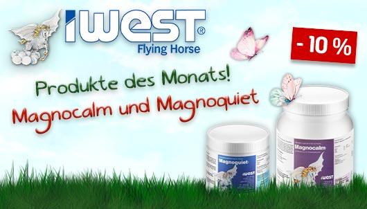 IWEST Deal des Monats - Magncalm und Magnoqui