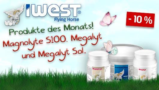 Iwest Magnolythe S100, Megalyt, Megalyt Sol