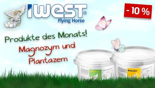 IWEST Deal des Monats - Magnozym & Planta